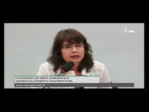 Clique para ver o vídeo: Alessandra Nilo - Seminário Agenda 2030 e ODS