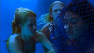 H2O: Just Add Water Trailer