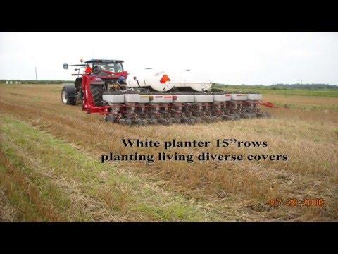 Improving Soil Health with David Brandt