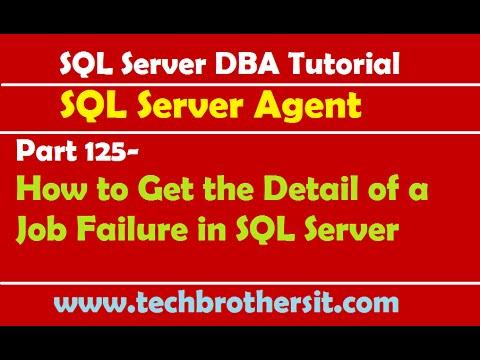Create and schedule a job in sql server 2008.