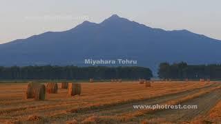 夏の牧草ロールの夕景