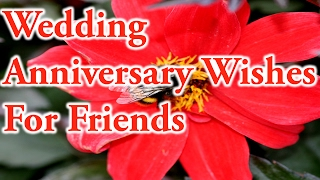 Wedding Anniversary Wishes For Friends.Love best quotes.