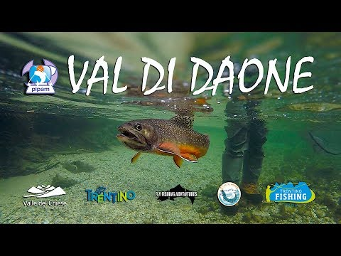No Kill - Val Daone