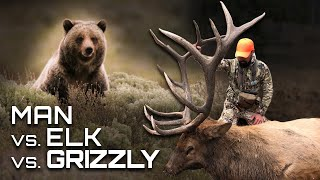 CRAZY Elk Hunting With GRIZZLY BEARS On Public Land