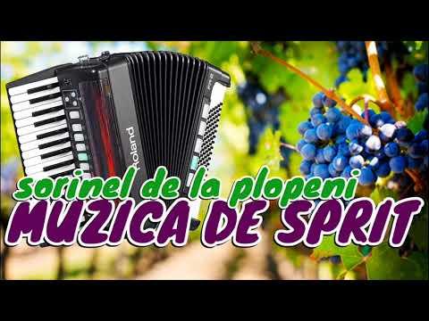 Muzica De Petrecere 2019 Sarbe Si Hore Colaj Super Program 2019 Mega