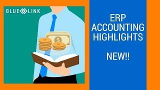 Blue Link ERP video