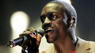 David Guetta feat Akon - Party Animal inkl. Downloadlink