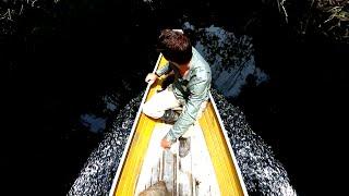На что ловят пиранью в амазонии