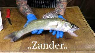 How To Prepare And Cook A Zander. Doom Bar Battered Zander. #SRP