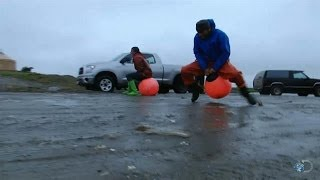 The Nome Olympics | Bering Sea Gold