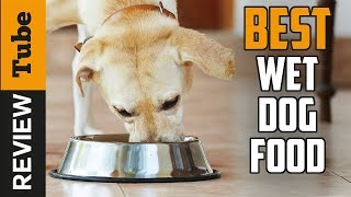 ✅ Dog Food: Best Wet Dog Food in 2021(Buying Guide)