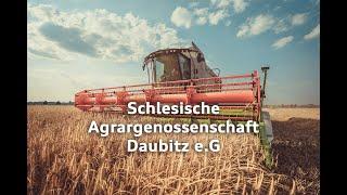 Agrargenossenschaft Daubitz