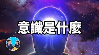 【震撼】史上最難話題,意識 | 老高與小茉 Mr & Mrs Gao