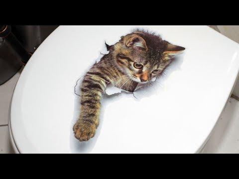 sweet 3D Cat\'s