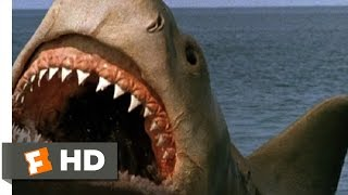 Jaws: The Revenge (8/8) Movie CLIP - Killing the Beast (1987) HD