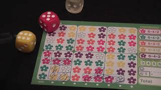 Bloom (Gamewright) Review