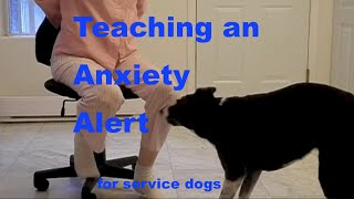 How to Train a PTSD Anxiety Alert for Service Dogs or Interrupt Self Harm Behaviors