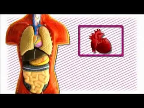 Este posibilă tratarea artrozei cu răceală?