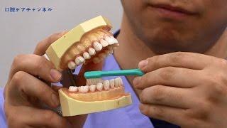 介助者のための歯ブラシの選び方