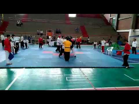 Combates por equipos de hapkido ( valle campeon campeonato nacional open santarosa) ( HAPTAEKWON)