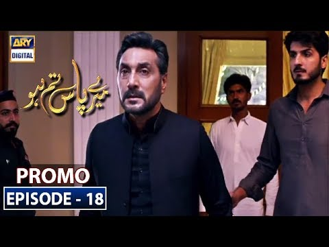 Meray Paas Tum Ho Episode 18   Promo   ARY Digital Drama