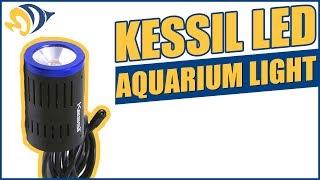 kessil a150w 10000k special blend led aquarium light sky blue