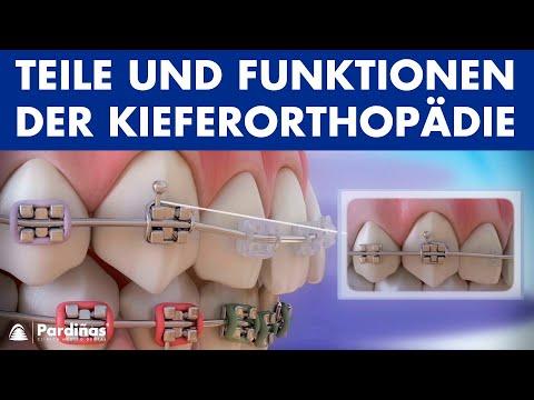 Entwicklung der Arthroskopie des Kniegelenks