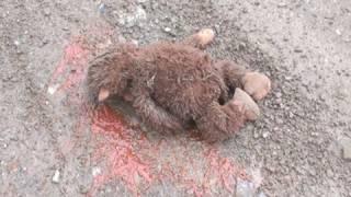 BABY SASQUATCH FOUND DEAD