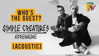 Simple Creatures   Adrenaline (Acoustic) | Lyric Video | Who's The Guest?