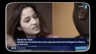 preview picture of video 'JT france3 : films Nermont sur le harcèlement'