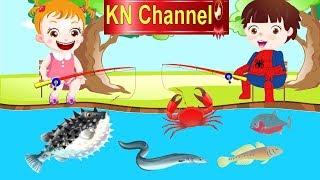 Hoạt hình KN Channel BÉ NA ĐI CÂU CÁ & BÀI HỌC VỀ SỰ VÂNG LỜI | Hoạt hình Việt Nam