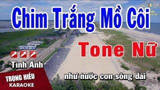 Karaoke Chim Trắng Mồ Côi Tone Nữ Nhạc Sống | Trọng Hiếu