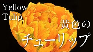 黄色いチューリップ【サンプル制作】 (30cm×30cm)