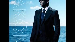 Akon - Still A Survivor