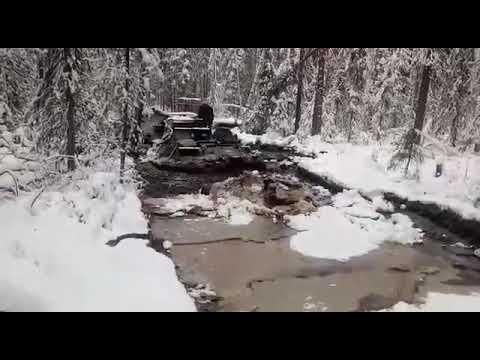 По лесу на газоне😂