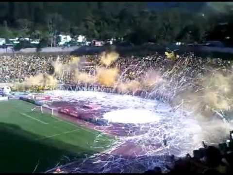 """Avalancha Sur! Deportivo Tachira"" Barra: Avalancha Sur • Club: Deportivo Táchira"