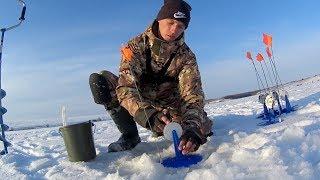 Оставил жерлицы без присмотра на ночь! Рыбалка зимой на жерлицы 2018.