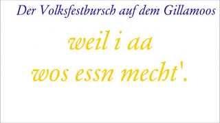preview picture of video 'Der Volksfestbursch auf dem Gillamoos'