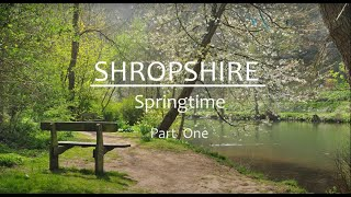 Shropshire Springtime Part One