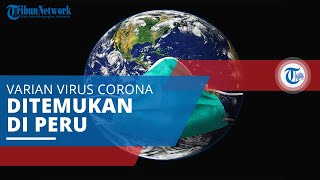 Lambda (C.37) , Varian Virus Corona Pertama Kali Diidentifikasi di Peru pada Agustus 2020