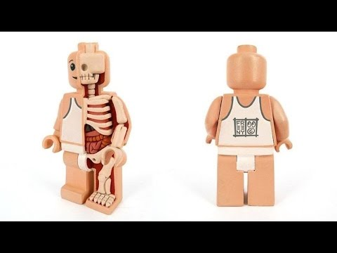 Fairycookies Jason Freeny 半解剖人偶 :樂高 LEGO 開箱