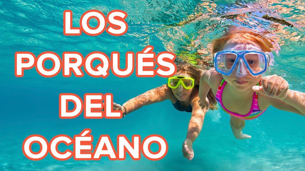 Todo lo que tus hijos no saben sobre el océano ???? | Los porqués de los niños