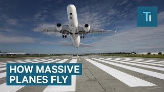 How Massive Airplanes Take Off And Stay In Midair
