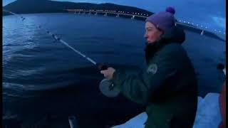 Ловля налима зимой в иркутске