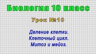 Биология 10 класс Урок 10
