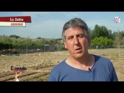 Escuela Municipal de Agroecología de La Zubia, Granada