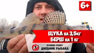Ловля щуки и окуня в москва-реке