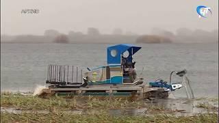 Совет при областном департаменте природных ресурсов и экологии изучил рекомендации по мелиорации водных объектов