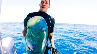 YBS Lifestyle Ep 27 - BEST DAY SPEARFISHING ON THE BOAT | Amazing Turtle Encounter | Catch And Cook