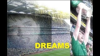 Limerick Win All Ireland Hurling final. Dolores O'Riordan. Dreams come true.